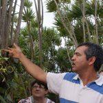 Visite guidée de la plantation de vanille avec Maurice Roulof